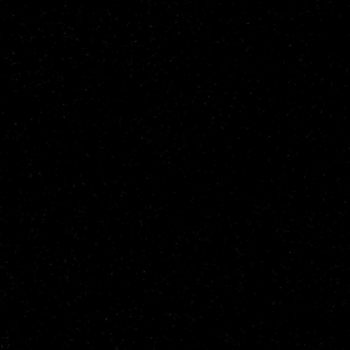 Полностью черная картинка носики